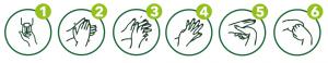 Anleitung zur Hygienische Händedesinfektion - FOTO